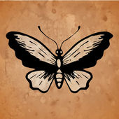 Butterfly on old paper — Stock Vector