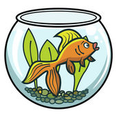 Goldfish in a bowl — Stock Vector