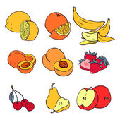 Various fruits — Stock Vector