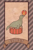 Vintage circus illustration, seal — Vecteur