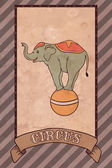 Vintage circus illustration, elephant — Stock Vector