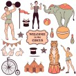 Set of various circus elements — Stock Vector #49365107