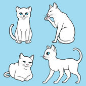 Cute white cats — Vector de stock
