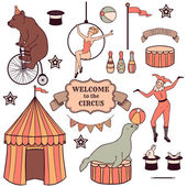 Set of various circus elements — Stock Vector