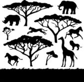 African animals silhouettes set — Stock Vector