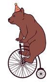 Circus bear — Stock Vector