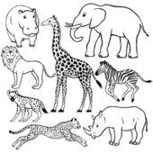 Set van afrikaanse dieren — Stockvector