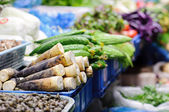 Vegetable stall at Chinese food Market, Shanghai — Stock Photo