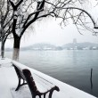 West Lake and Leifeng Pagoda in the snow, Hangzhou, China — Stock Photo