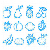 Doodle drawn fruits — Stock Vector