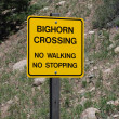 Royalty-Free Stock Photo: Warning sign: Big Horn Sheep Crossing