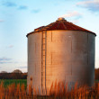 Farm silo — Stock Photo #23713735