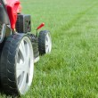 Grassmower - Stock Photo
