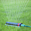 Stock Photo: Lawn watering