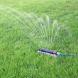 Lawn watering — Stock Photo #19212357