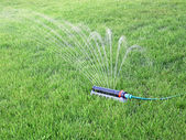 Lawn watering — Stock Photo