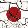 Cracked Japan flag — Stock Photo #21290821