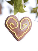 Mistletoe and heart — Stock Photo