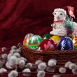 Easter Lamb — Stock Photo