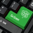 Go green key — Stock Photo