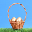 Golden eggs in wicker basket — Stock Photo