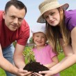 Family gardening — Stock Photo #26969407