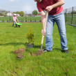 Dad and daughter gardening — Stock Photo #26969427