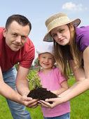 Family gardening — Stock Photo