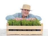 Senior gardener with box of aspic — Stock Photo