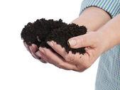 Fistful of soil — Stock Photo