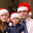 Stock Photo: Christmas family portrait