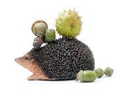 Jeż z żołędzie i kasztany — Zdjęcie stockowe