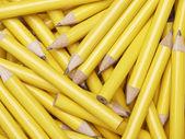Trä pennor — Stockfoto