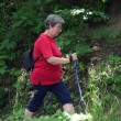 Stock Photo: Nordic walking