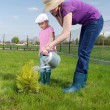 Family gardening — Stock Photo #33171401