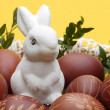 Easter bunny — Stock Photo #39558331
