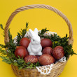 Easter bunny — Stock Photo #40248483