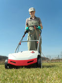 Lawn scarifying — Stock Photo