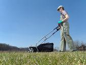 Lawn scarifying — Stock Photo