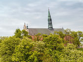 Cathedral in Sandomierz — Stock Photo