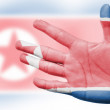 Cheering fan with Painting national North Korea flag — Stock Photo