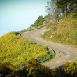 Winding road — Stockfoto #36058081