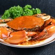 Singapore chili mud crab — 图库照片