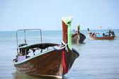 Tay uzun kuyruklu tekne — Stok fotoğraf