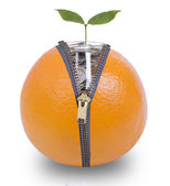 Unzip orange  for growing money — Stock Photo