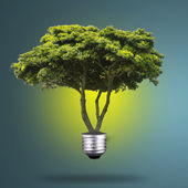 Idea Plant light bulb  — Stock Photo