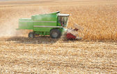 Combine harvesting corn — Photo