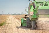 Harvesting of soy bean — Stock Photo