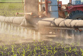 Tractor fertilizes crops — Stockfoto