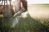Tractor fertilizes crops — Photo